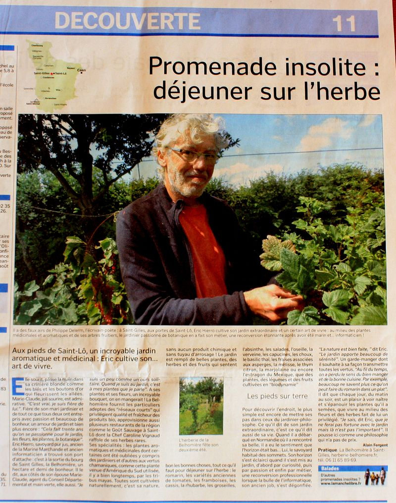 Article-herberie-manchelibr
